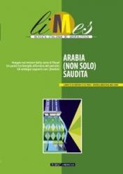 Arabia (non solo) Saudita